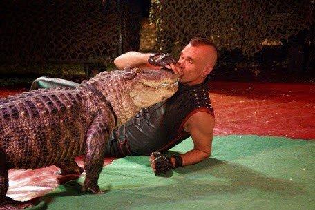 Reptielenshow krokodil